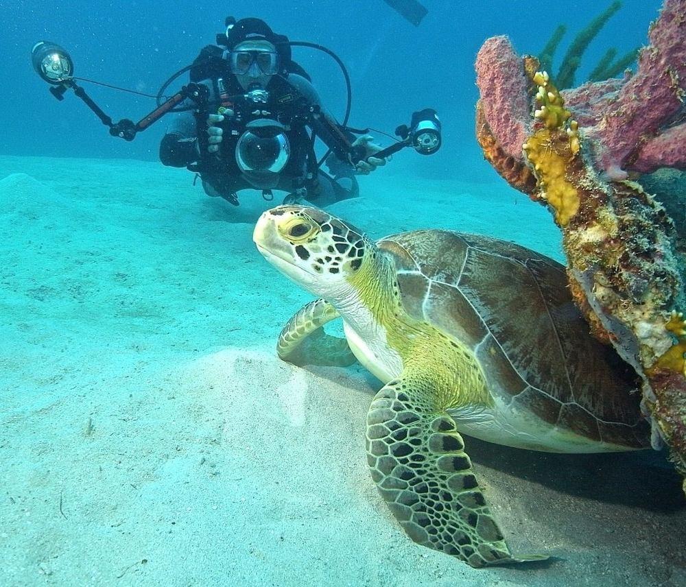 Turks & Caicos Island!